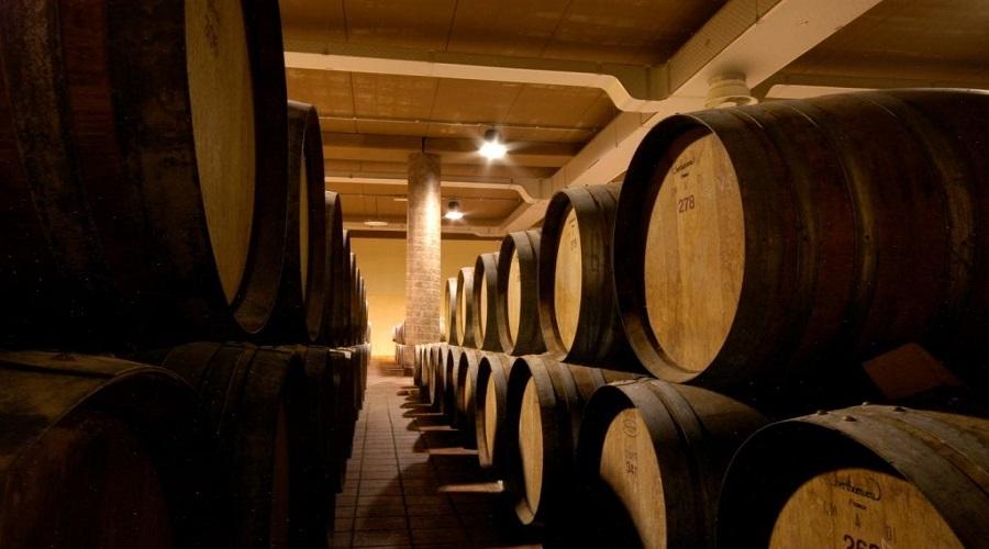 Visita di una azienda vinicola a Montalcino e degustazione del Brunello