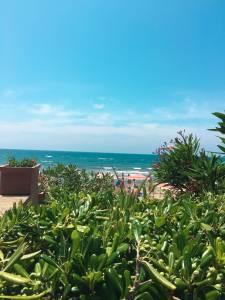 Spiaggia follonica